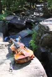 Violon et chute